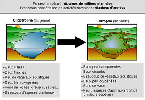 Eutrophisation__RAPPEL,_2009 dans F-Environnement